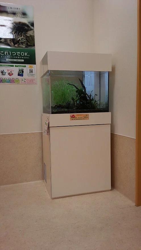 愛知県岩倉市・動物病院様