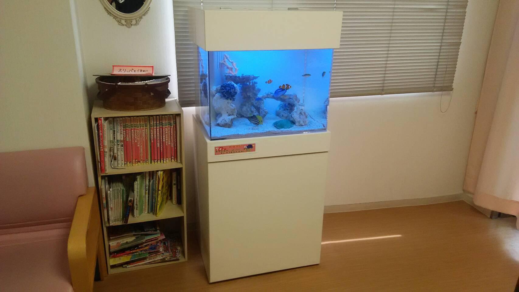 愛知県犬山市・小児科様 /> <p>今回の水槽買い換えが3台目になります。<br /> 今までは水槽のバックスクリーンが青でしたが、今回はイメージを変えて白色に!<br /> これによって青色の魚が映えるようになりました。<br /> 院内の壁紙も同じ白色なので、調和がとれて水槽内が広く見えると思います。</p> <img src=